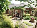 a garden 3.jpg