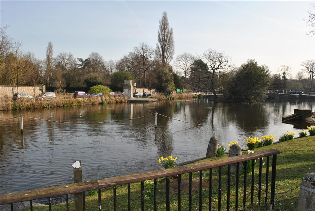 Carshalton Ponds
