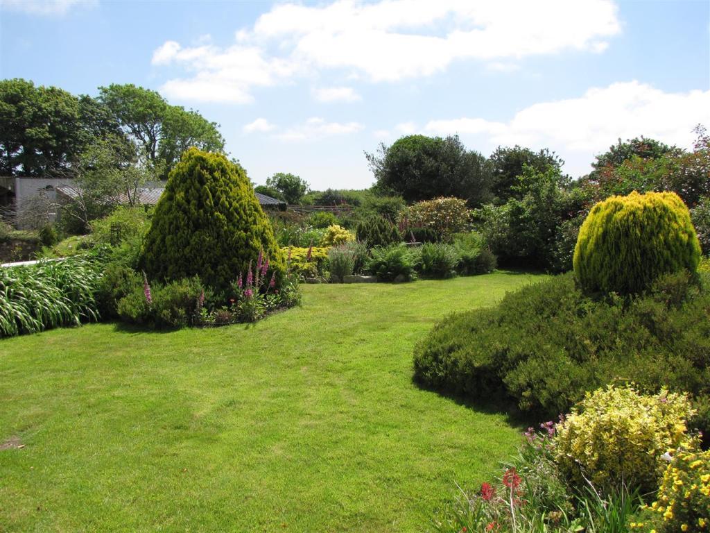 6852 garden.JPG