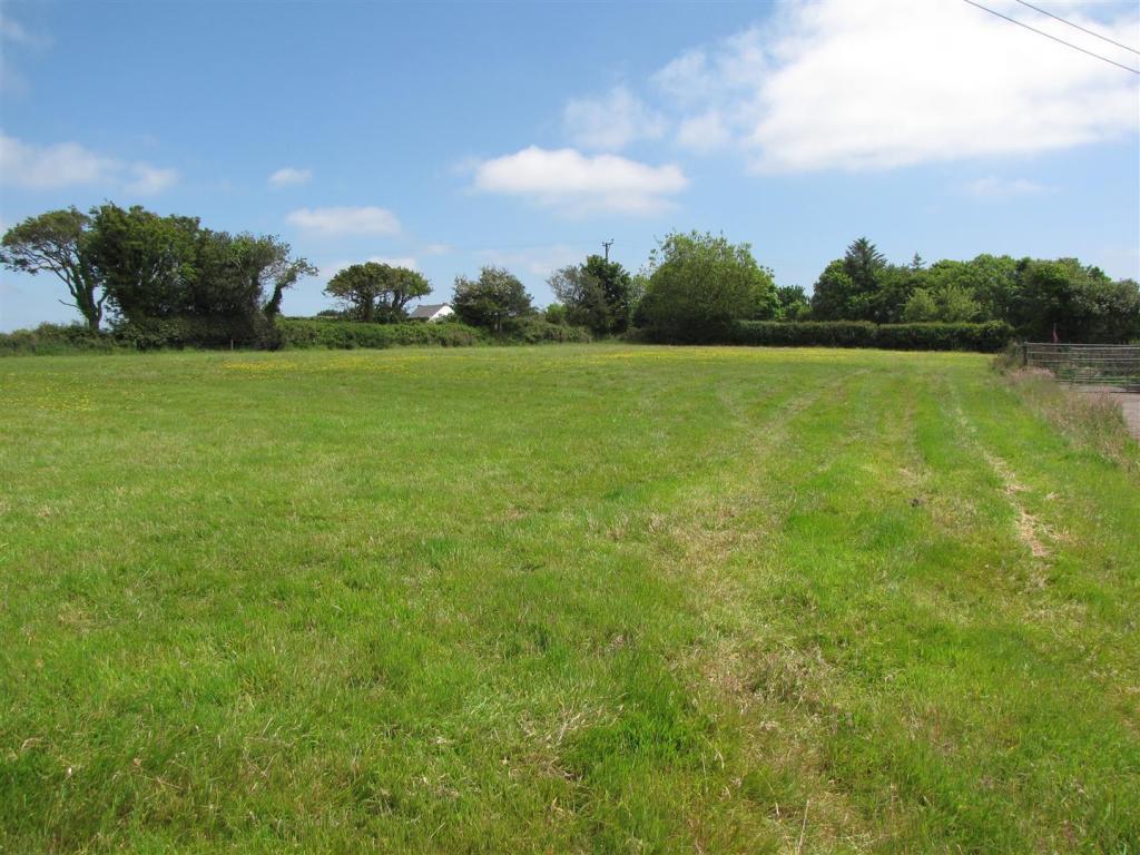 6852 field 2.JPG