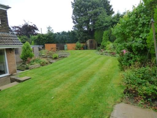 Garden Picture2