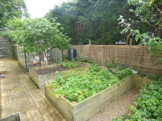 Vegtable patch