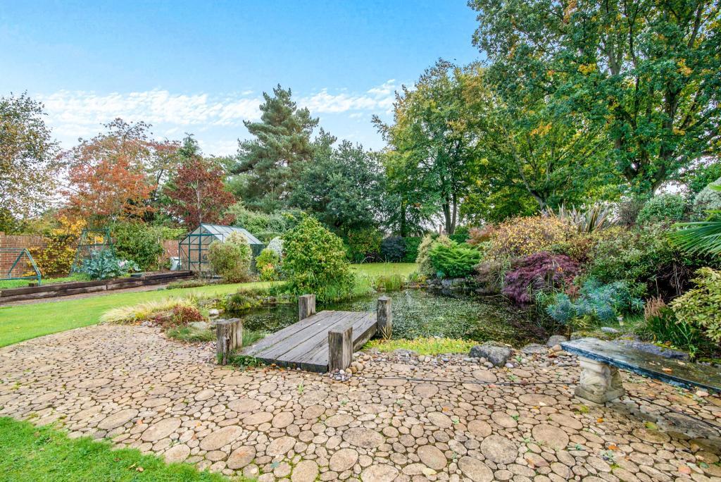 Rear garden/pond