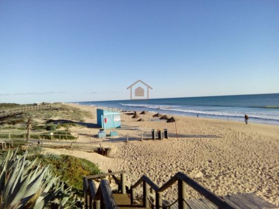 Beach - Oceano Club