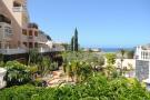 2 bed Apartment in Los Cristianos, Tenerife...