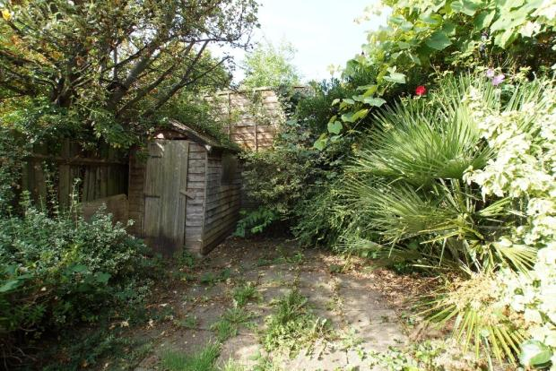 West-Facing Garden