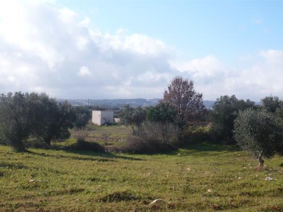 View of Martina Franca