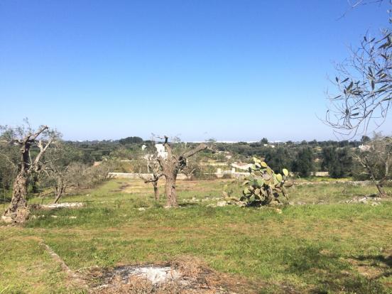 View of Ostuni