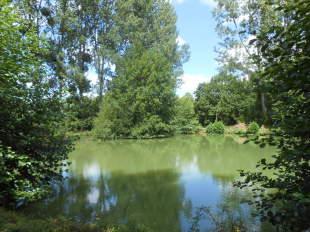 Land in Pays de la Loire, Sarthe...