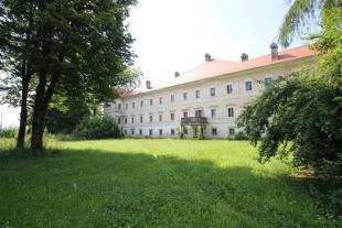 Manor House in Medvode, Ljubljana Siska for sale