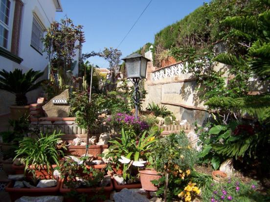 1240 garden (Medium)