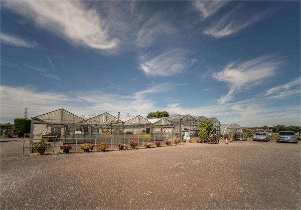 Lonsdale Nursery
