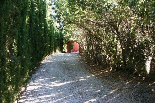 Drive way from main gate
