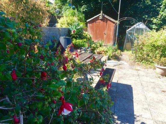 Vernon garden.jpg