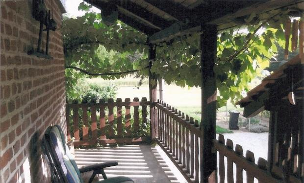 Huge covered balcony shaded by grape vines