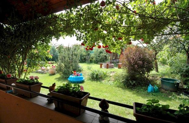 Safe garden for kids