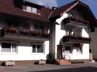 property for sale in Carinthia, Spittal an der Drau, Dobriach