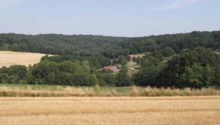 Barn Conversion in Murska Sobota, Dolina...