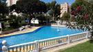 Studio apartment in Benidorm, Alicante...
