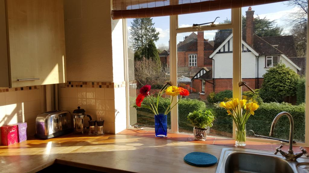 Gorgeous view of conservation area from kitchen