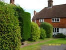 3 bed semi detached property to rent in Sparrows Green, Wadhurst