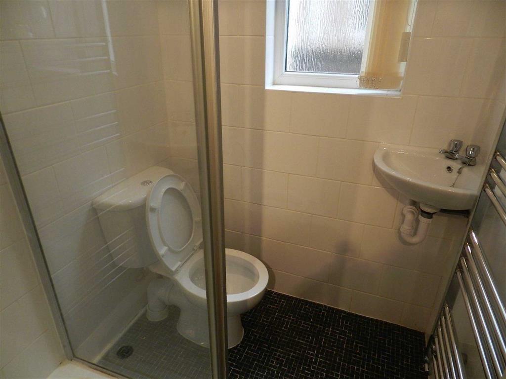 Downstairs Shower Ro