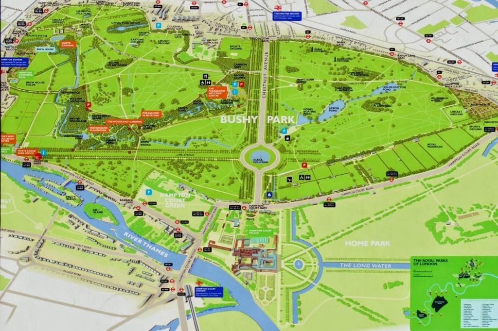 Bushy park.jpg