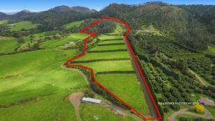 property for sale in Bay of Plenty