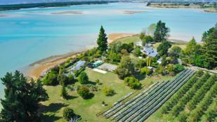 property for sale in Nelson, Tasman, Tasman