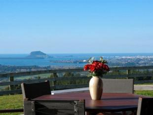 4 bed home for sale in Te Puna, Bay Of Plenty