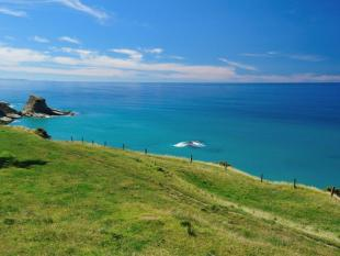 Land in Mahia Peninsula for sale