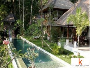 5 bedroom house for sale in Ubud, Bali