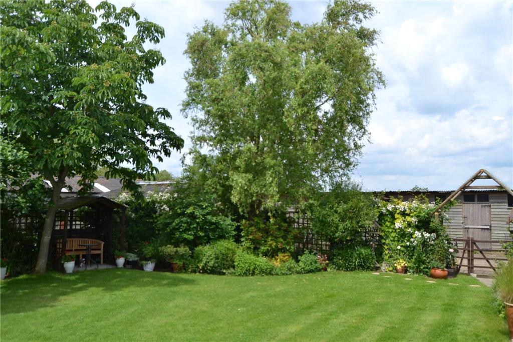 Treetops rear garden