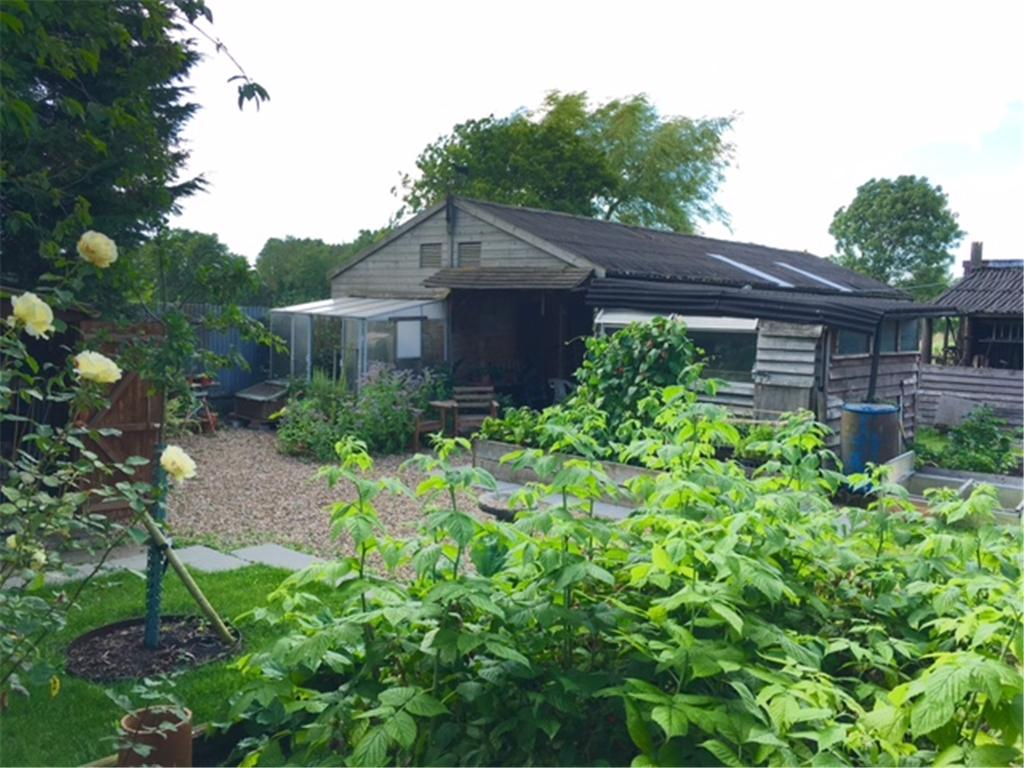 Treetops View of stables & outbuildings plus potting vegetable garden area