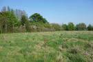 Swithland Lane Land