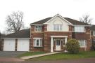 Marlborough Drive Detached house to rent