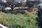 Javea Plot for sale