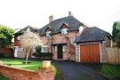 Detached property to rent in Horsell Park, Woking...