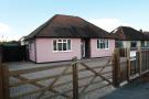 Bungalow to rent in Woking