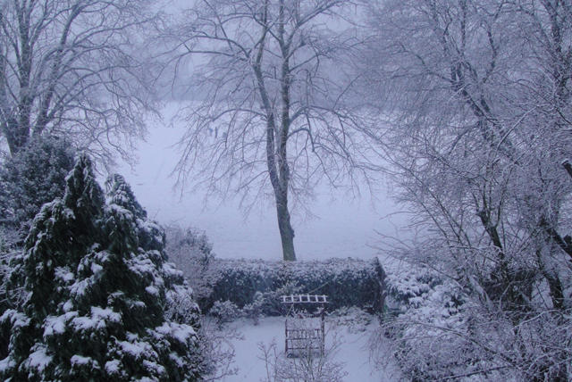 'Wintery' Park View