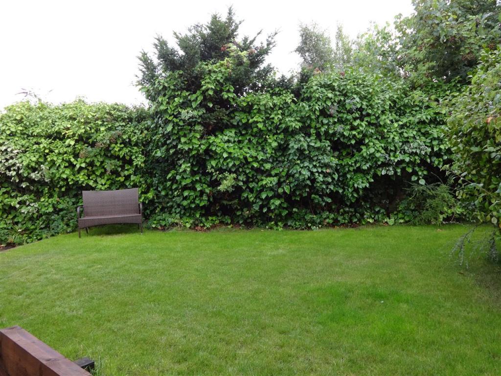 Additional Photo of Rear Garden