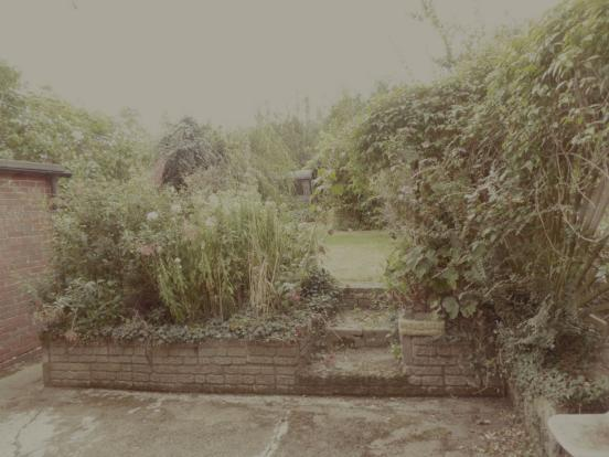 Garden (Email)