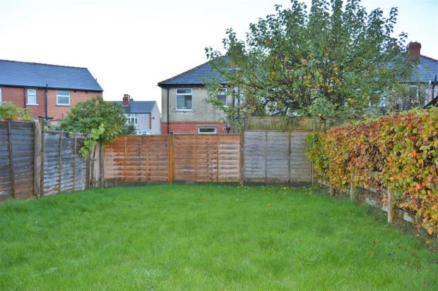 Back Garden 2