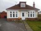 Detached Bungalow for sale in Clas Dyfrig, Whitchurch...