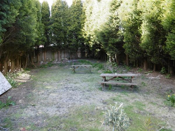 Gardens/Driveway