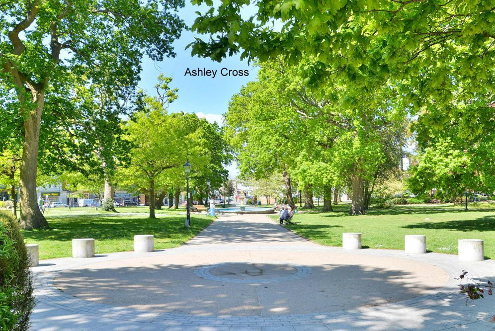Ashley Cross
