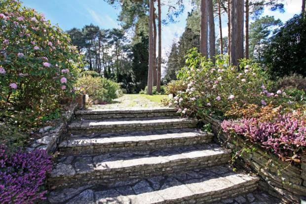 Steps/flowers