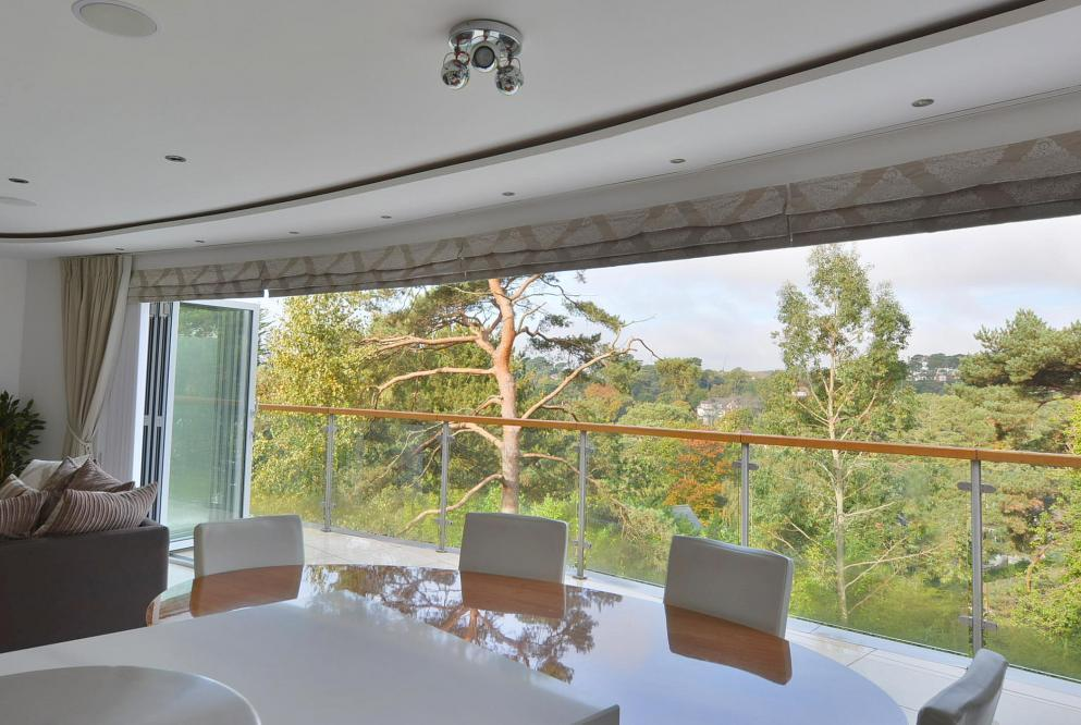 View from dining area