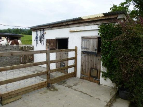 Pony Stable/Kennel