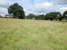 Land in Land Adjacent to for sale